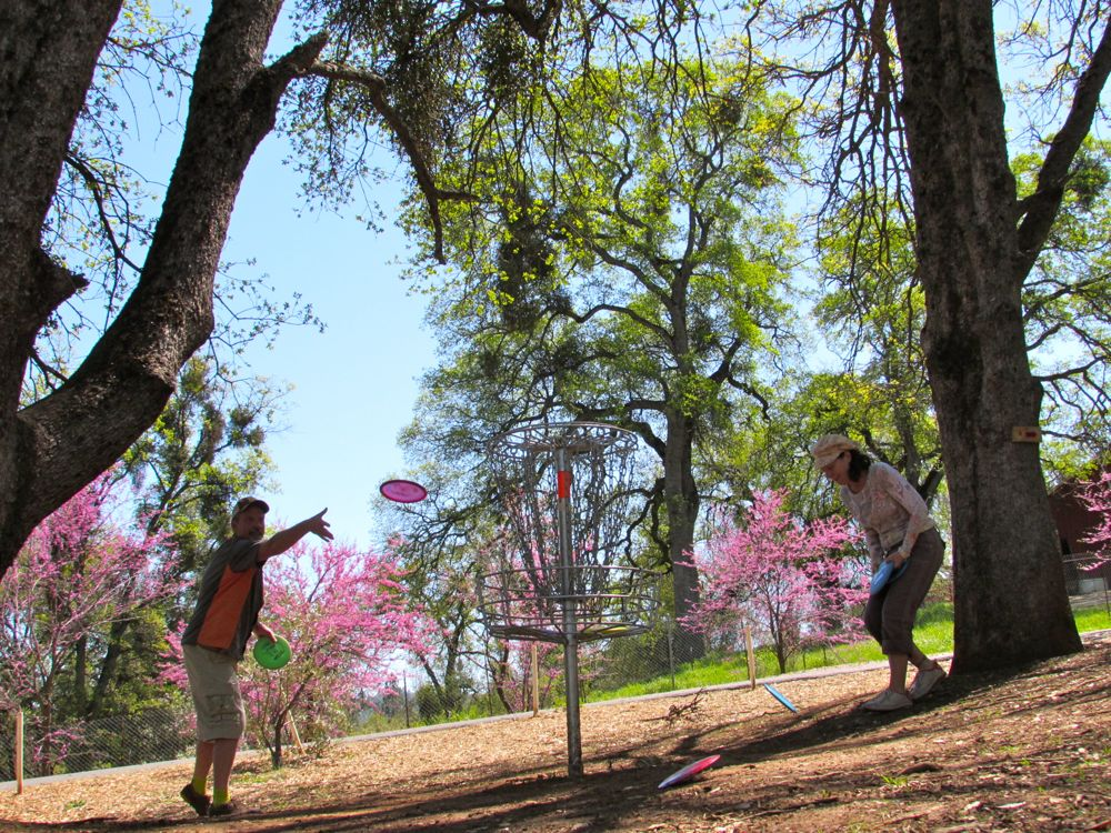Spring is Perfect for Disc Golf!